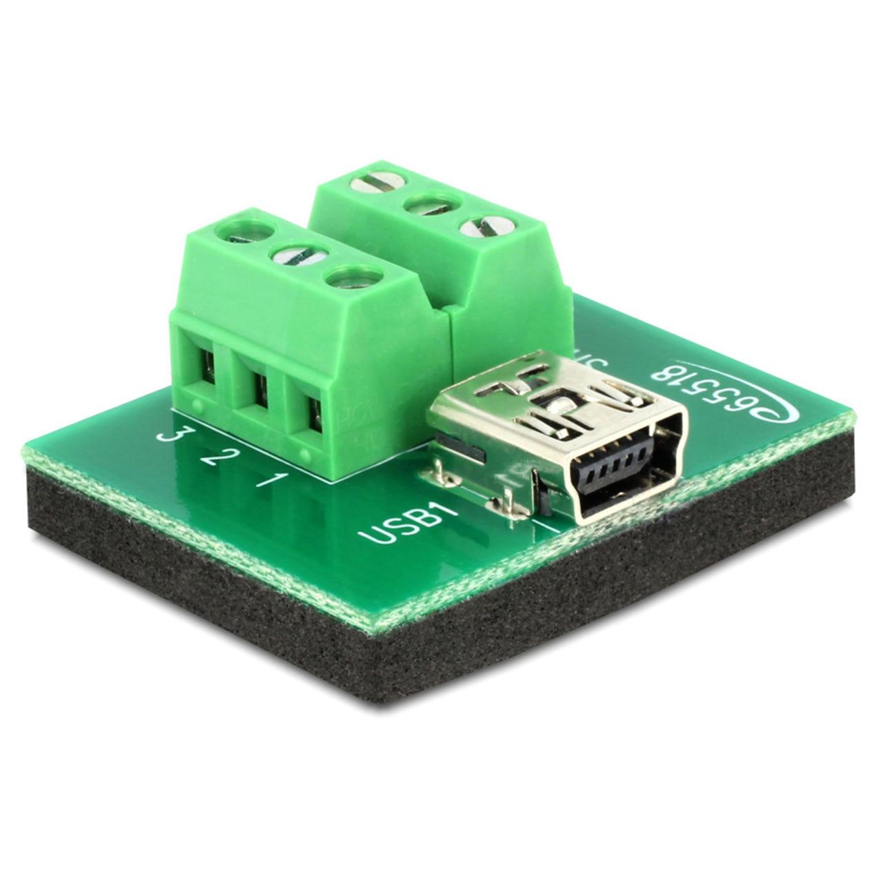 Delock Adapter Terminalblock > Mini USB Typ B Buchse