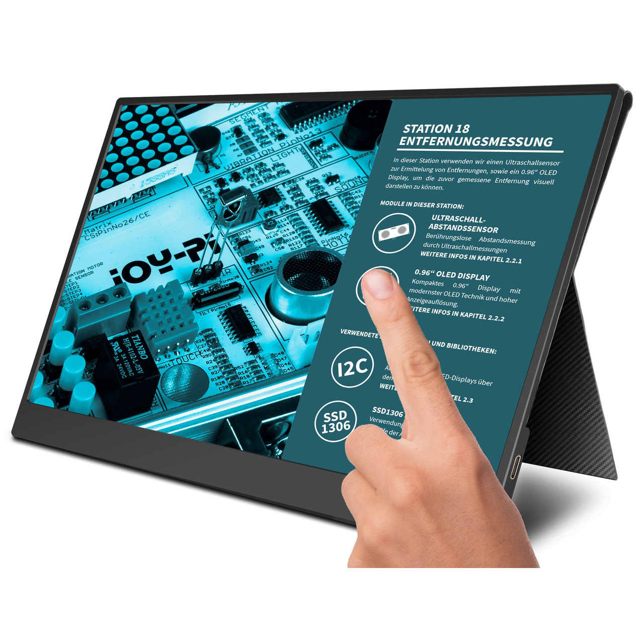 JOY-iT Tragbarer 15-6undquot  Touchscreen-Monitor - Zweitmonitor- inkl- Smart Case Hund-252 lle